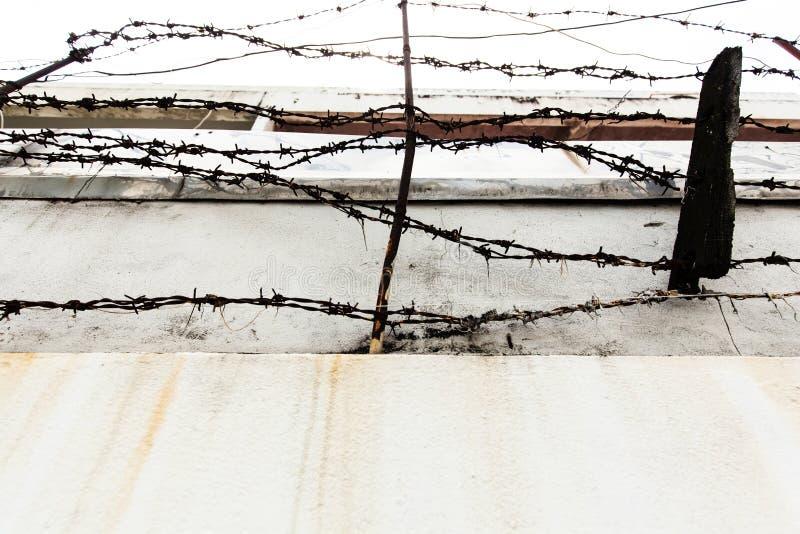 Download Abstrakte Abbildung Des Stacheldrahts Stockfoto - Bild von zaun, barbed: 96927852