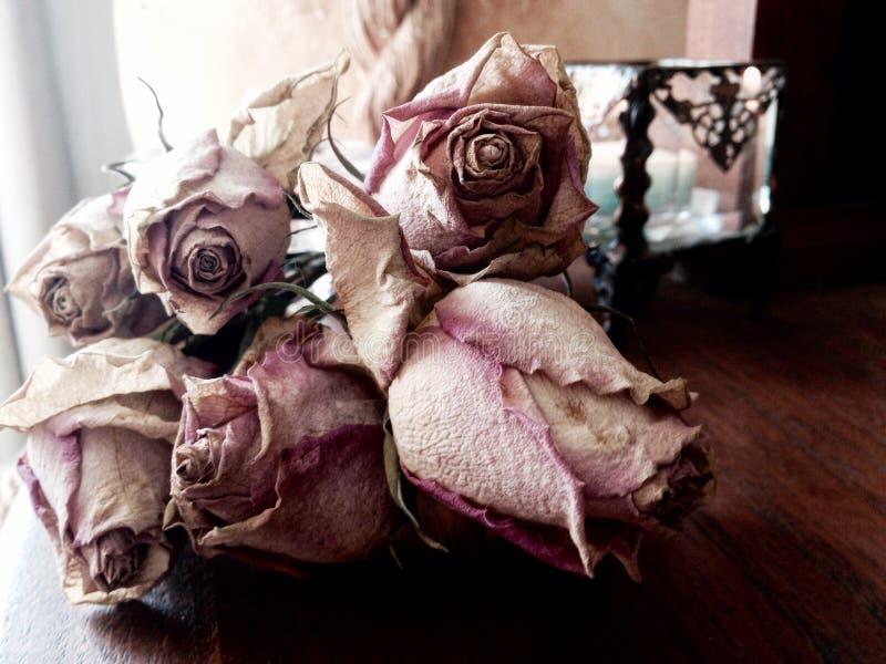 Abstrakte Bündeltote trockneten rosa Rosenkonzepttod, Verlust, Leid lizenzfreie stockbilder