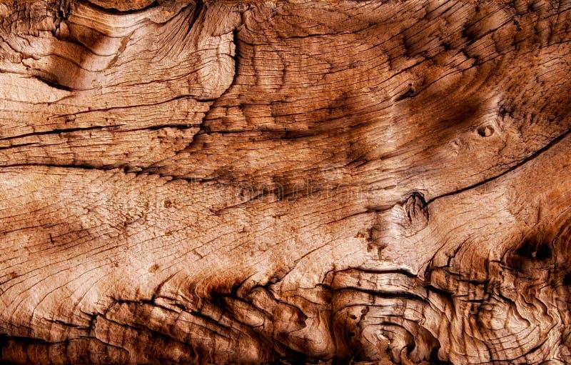 Abstrakte Beschaffenheit des trockenen Holzes lizenzfreies stockbild