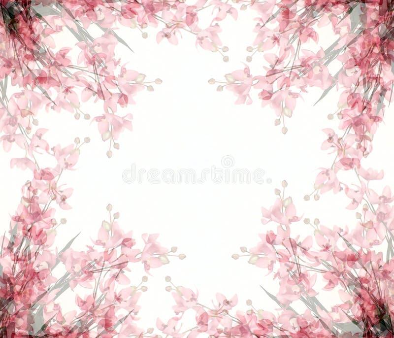 Abstrakte Blumenfoto-Felder lizenzfreie abbildung