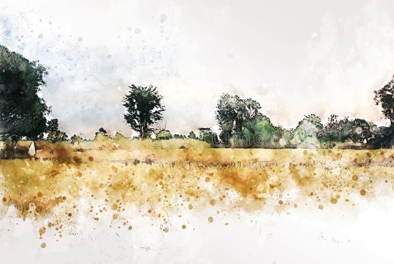 Abstrakte bunte Baumlandschaft und -feld auf Aquarellillustrations-Farbenhintergrund lizenzfreie abbildung