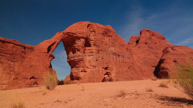 Abstrakte Felsformation an Steinelefanten Hochebene Ennedi alias in Tschad stockbilder