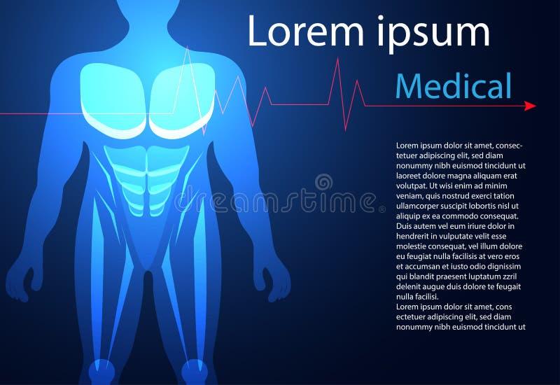 Abstrakte Gesundheitsheilkunde bestehen menschlicher Körper digitales techn lizenzfreie abbildung