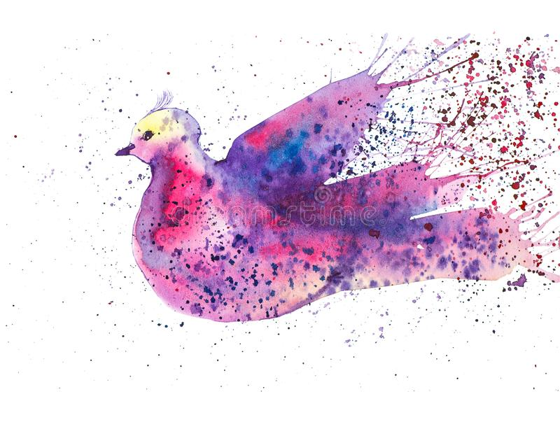 Abstrakte mehrfarbige Taube umgeben durch farbige Tropfen Aquarellillustration lokalisiert auf weißem Hintergrund lizenzfreie abbildung