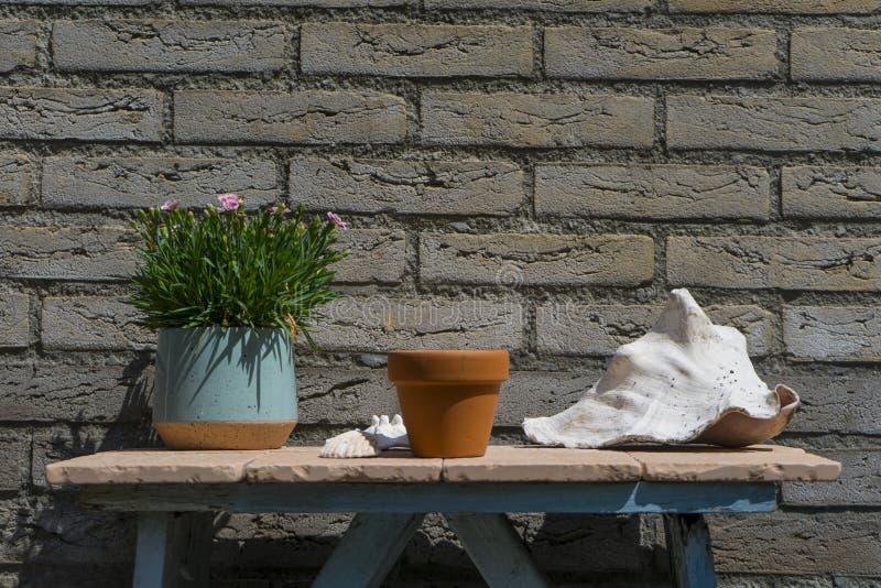 Abstrakte minimalistic Gartendekorationstabelle Mit Hausziegelsteinhintergrund- und -Pfl?nzchent?pfen um das kleine blaue h?lzern lizenzfreie stockfotos
