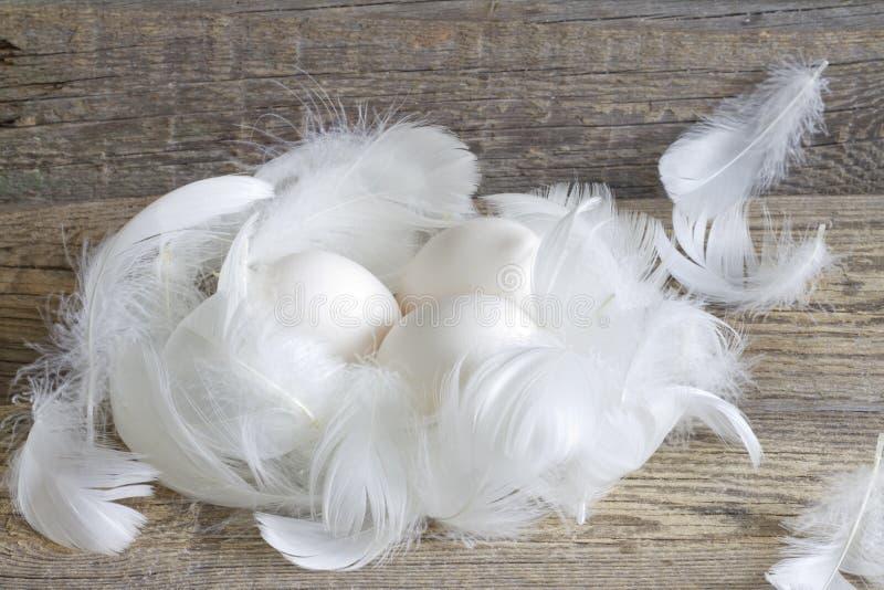 Abstrakte Ostern-Bio-Eier auf Weinlese verschalt im Hühnerstall lizenzfreies stockbild