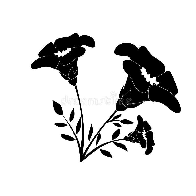 Abstrakte Schwarzweiss-Blumen stockfotos