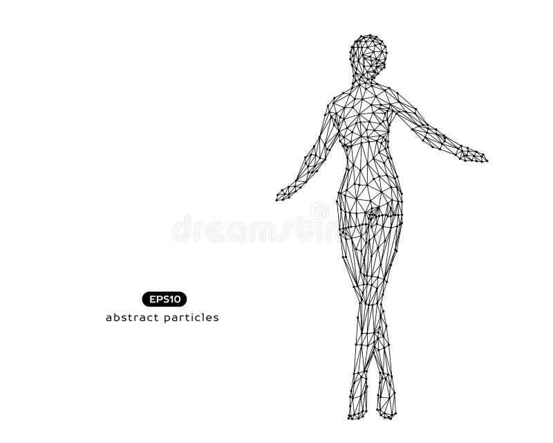 Abstrakte Vektorillustration der Cyberfrau stock abbildung