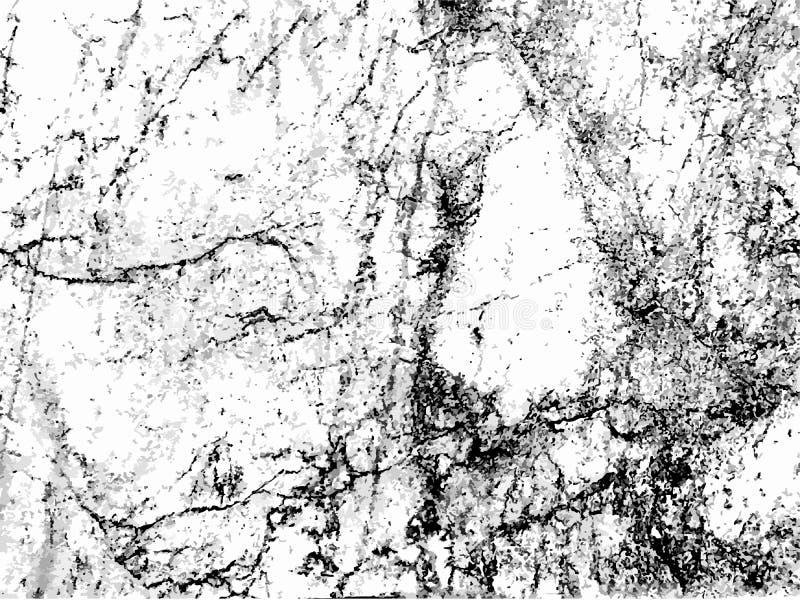 Abstrakte weiße und schwarze Marmorbeschaffenheit, Vektormuster backgrou vektor abbildung