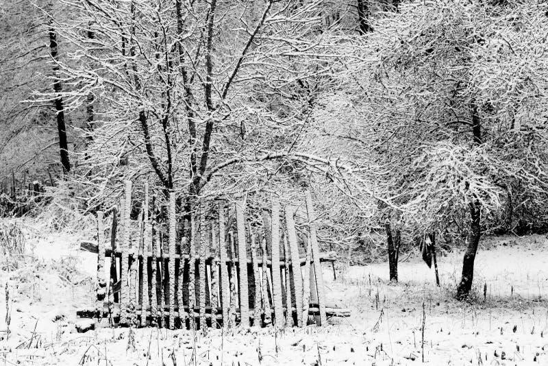 Abstrakte Winterlandschaft stockfoto