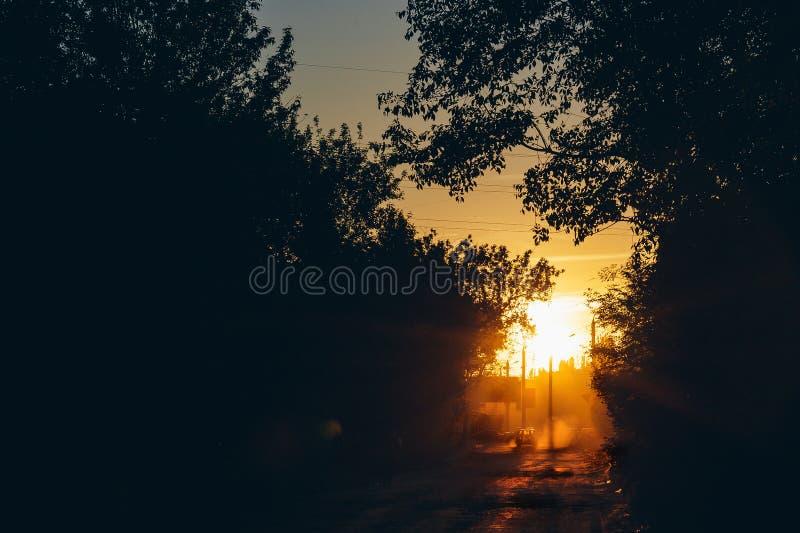 Abstrakter Abendstadtsonnenuntergang, dunkle Schattenbilder von Bäumen, Dämmerung im Sonnenlicht stockfoto