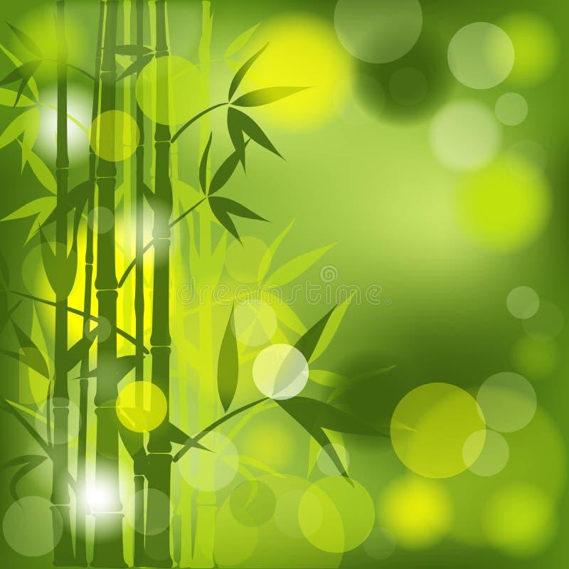 Abstrakter Bambushintergrund,   vektor abbildung