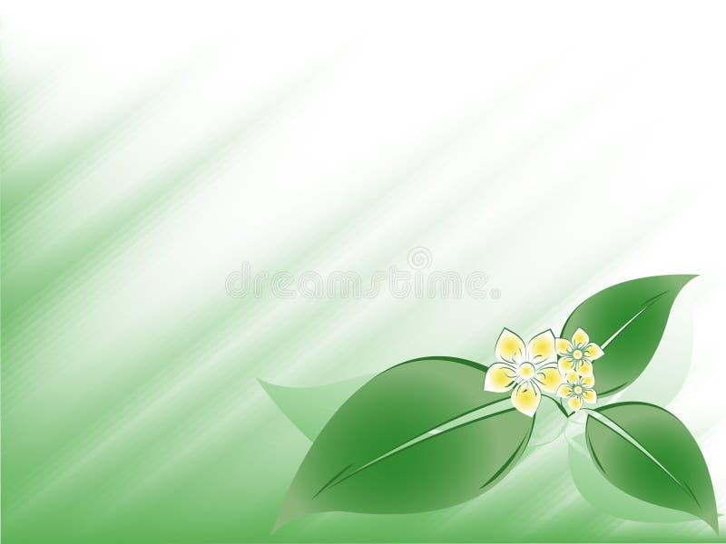 Abstrakter Blumenvektor lizenzfreie abbildung