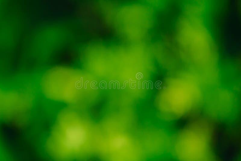 Abstrakter grüner Natur-Hintergrund stockfotografie