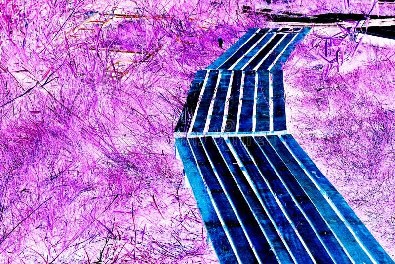 Abstrakter hölzerner Fußweg stockbilder