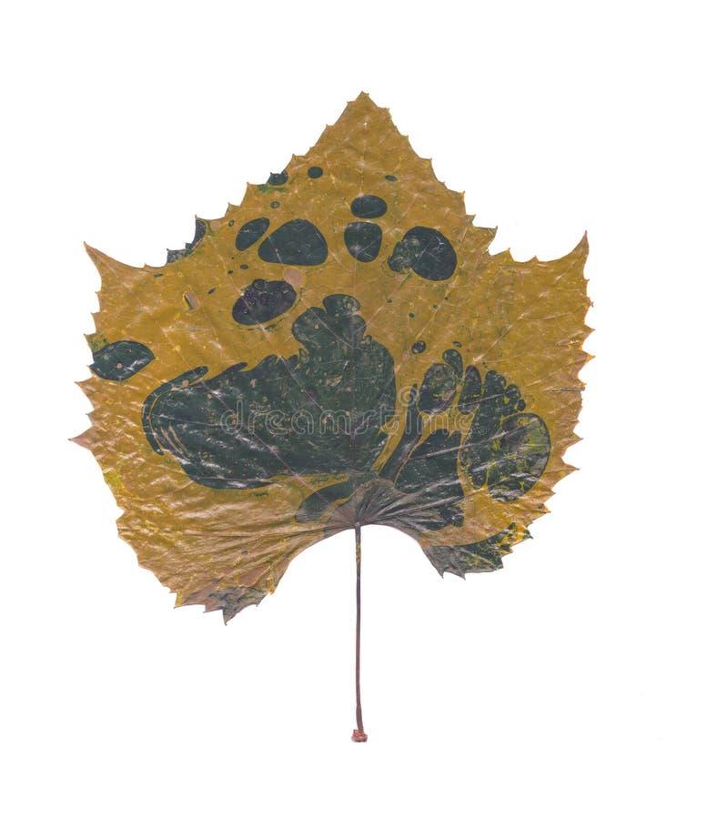 Abstrakter handgemalter Marmorierunghintergrund in der Art der modernen Kunst mit flüssiger freifließender Tinte und Acrylmalerei lizenzfreies stockfoto