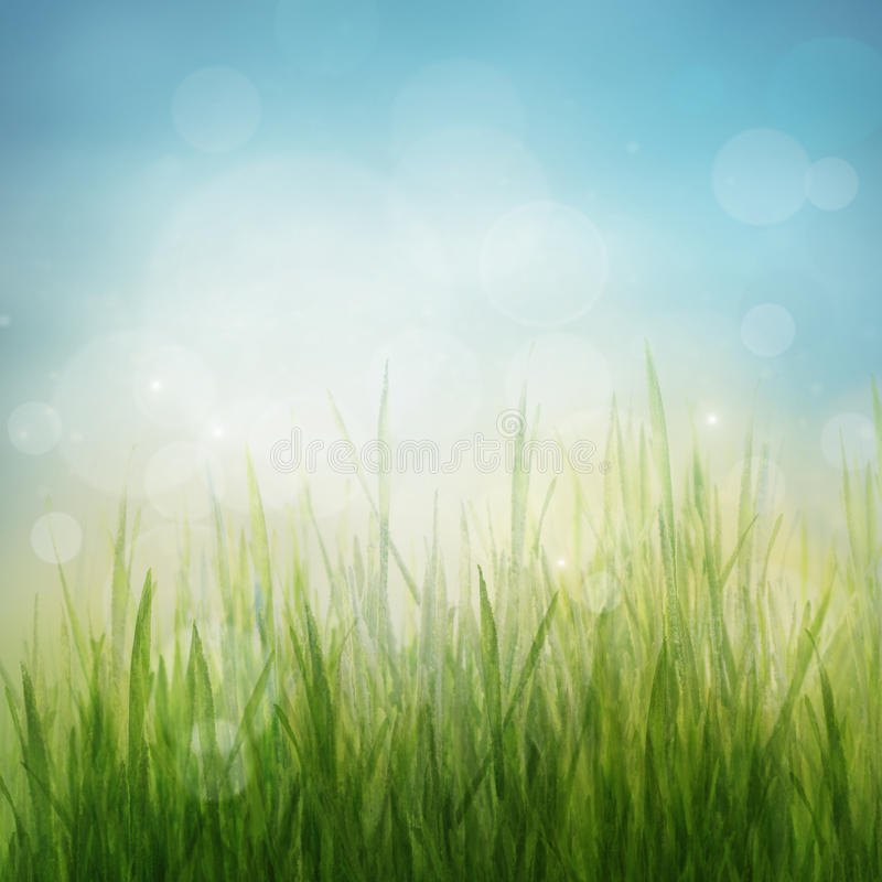 Abstrakter Hintergrund des Frühlinges oder der Jahreszeitnatur des Sommers