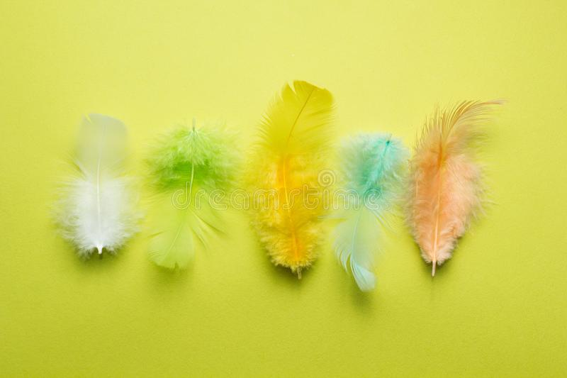 Abstrakter Hintergrund vom Satz mehrfarbigen schönen und weichen Federn eines Vogels auf Gelb lizenzfreies stockfoto