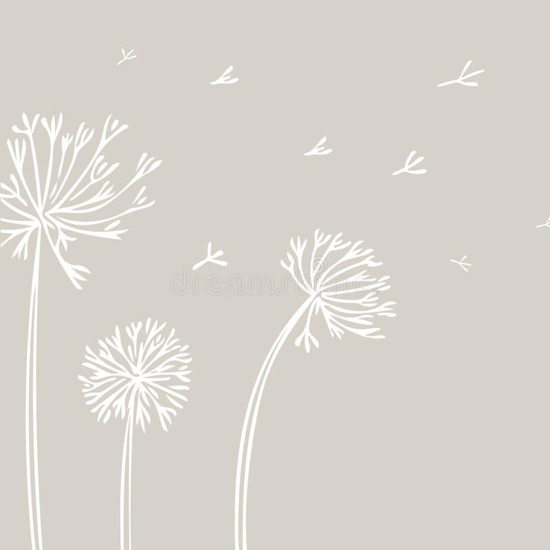 Abstrakter Löwenzahn-Hintergrund mit weißen Blumen auf beige Hintergrund vektor abbildung