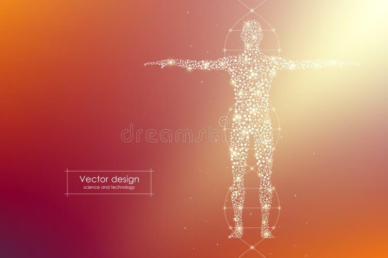 Abstrakter Menschlicher Körper Mit Moleküle DNA Medizin ...