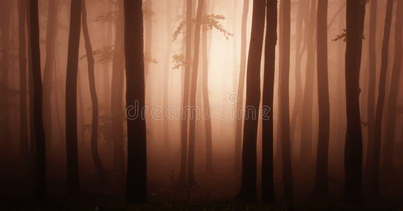 Abstrakter roter Wald stockbilder