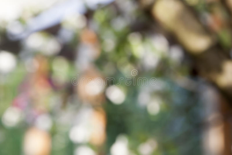 Abstrakter schöner natürlicher Hintergrund lizenzfreie stockbilder