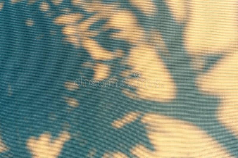 Abstrakter Schattenhintergrund des natürlichen Blattbaumasts, der auf Fenstervorhangbeschaffenheit fällt lizenzfreies stockfoto