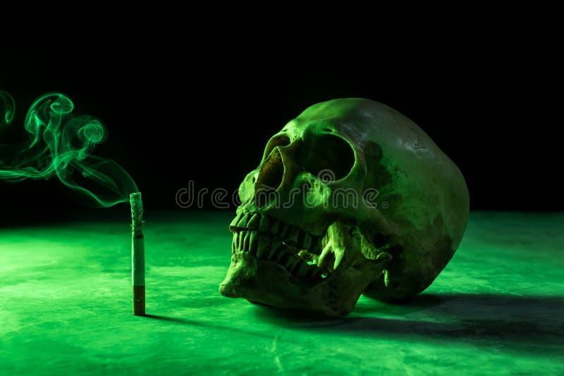 abstrakter Stillleben Schädel eines Skeletts mit brennender Zigarette, lizenzfreies stockbild