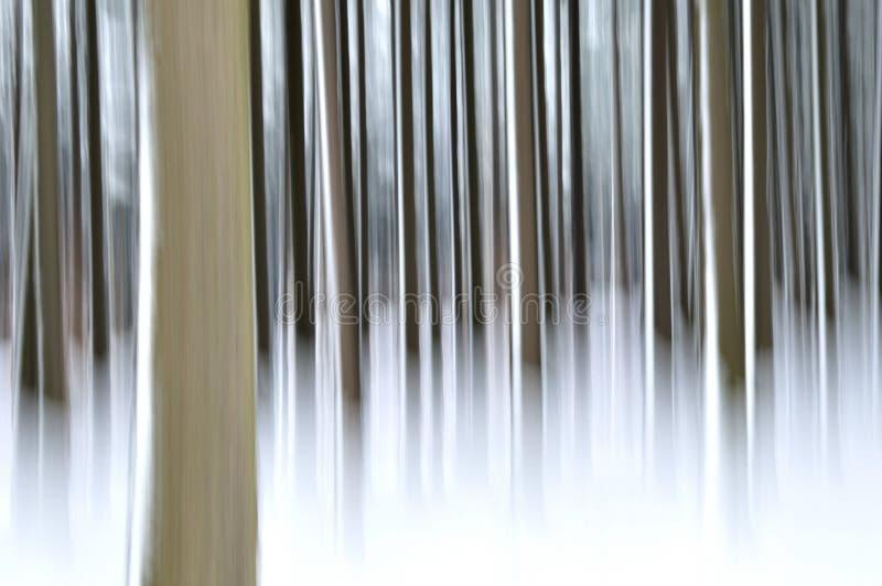 Abstrakter Wald im Winter stockfoto