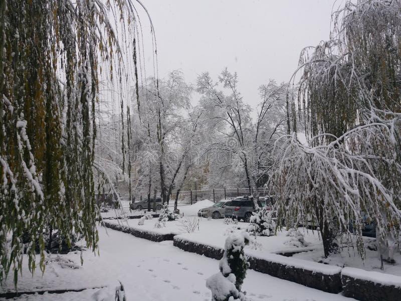 Abstrakter Winterhintergrund stockfotos