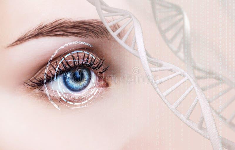 Abstraktes Auge mit digitalem Kreis und DNA-Ketten stockfoto
