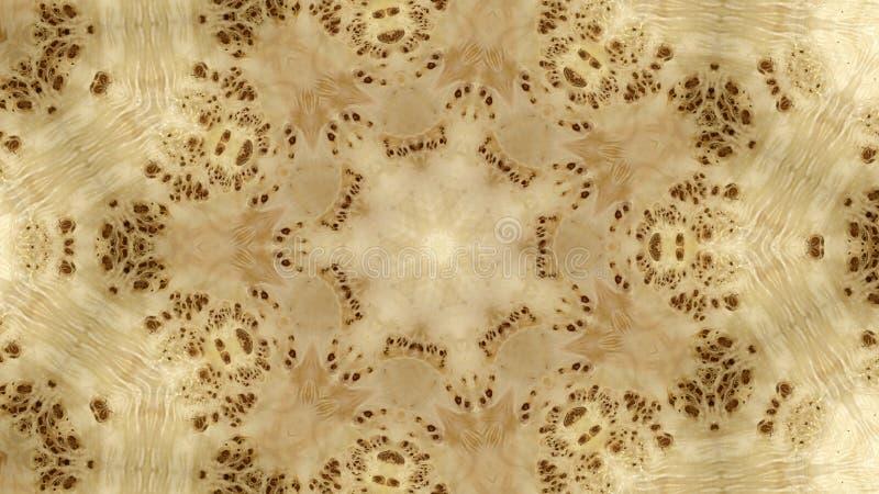 Abstraktes Bild einer hölzernen Beschaffenheit eines Pappelwurzelbaums lizenzfreie abbildung