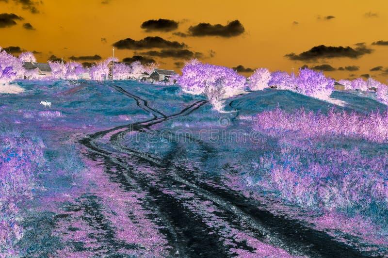Abstraktes digitales Bild der Landschaft mit der Landstraße, die zu Häuser auf dem Hügel führt lizenzfreie stockfotos