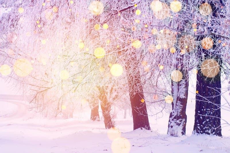 Abstraktes Hintergrundmuster der weißen Sterne auf dunkelroter Auslegung Eisige Bäume mit Sonne magischem bokeh im Sonnenlicht lizenzfreie stockbilder