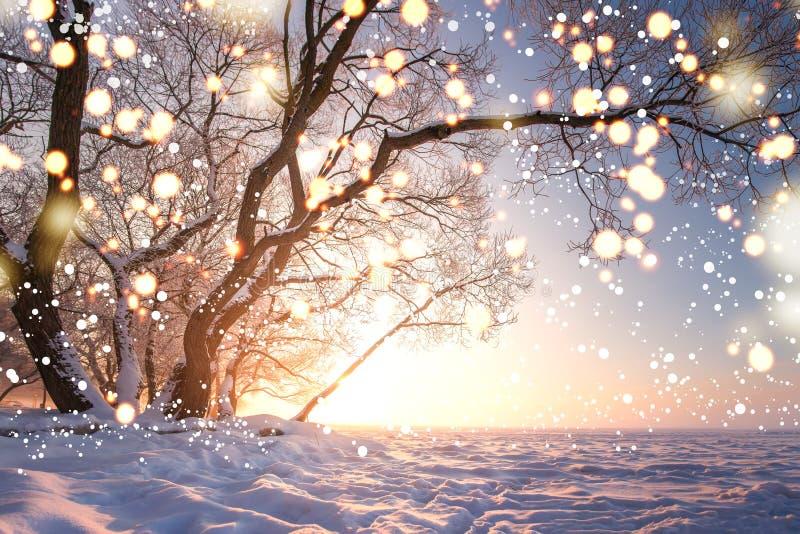 Abstraktes Hintergrundmuster der wei?en Sterne auf dunkelroter Auslegung Magische glühende Schneeflocken in der Winternaturlandsc stockbild