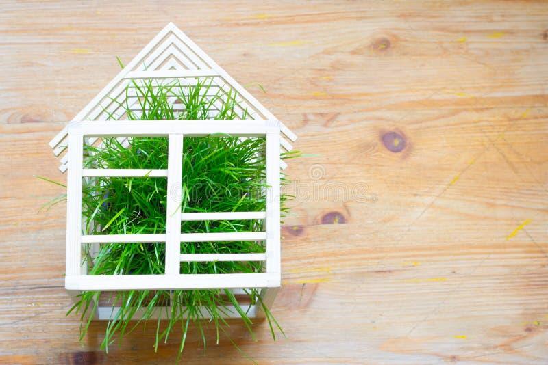 Abstraktes Konzept des Holzhauses und des Ökologiebaus des grünen Grases stockbild