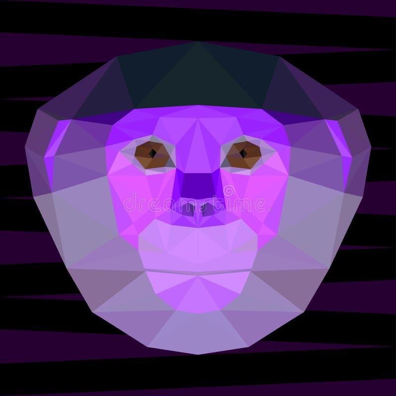 Abstraktes Purpur färbte polygonales geometrisches rot--shanked Kleideraffeporträt für Gebrauch im Design lizenzfreie abbildung
