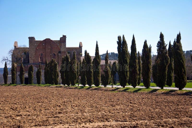 Abtei San-Galgano stockbilder