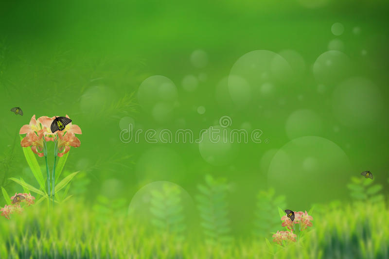 Download Abtract Background Of Butterfly In Green Garden As Stock Image - Image: 27299737