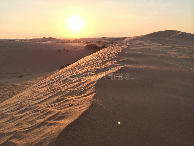 Abu Dhabi Desert stock foto