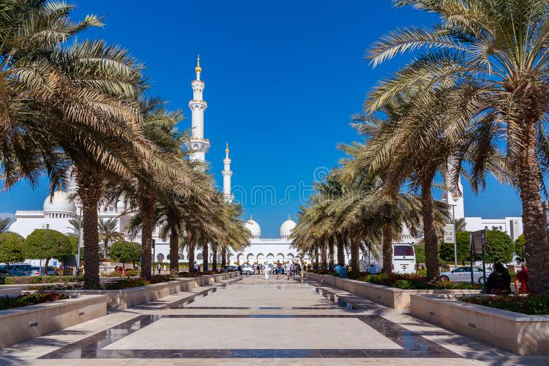 Abu Dhabi, United Arab Emirates - December 13, 2018: Palm Alley on the road to Sheikh Zayed Mosque stock images