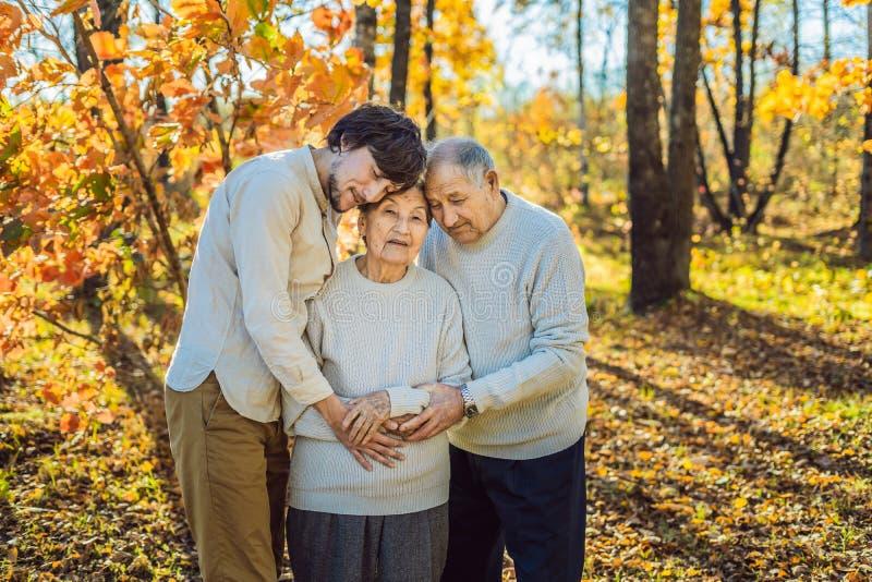 Abuela, abuelo y nieto adulto abrazando en parque del otoño imagen de archivo