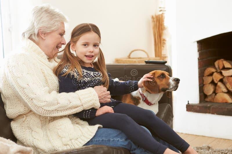 Abuela y nieta que se relajan en casa con el perro casero imagen de archivo