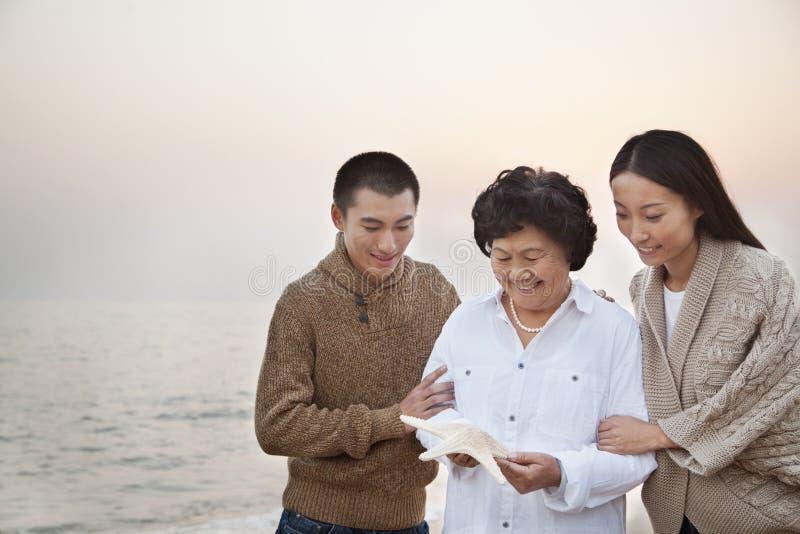 Abuela y nietos que miran estrellas de mar imagen de archivo