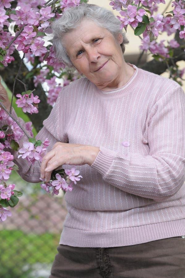Abuelita feliz fotografía de archivo
