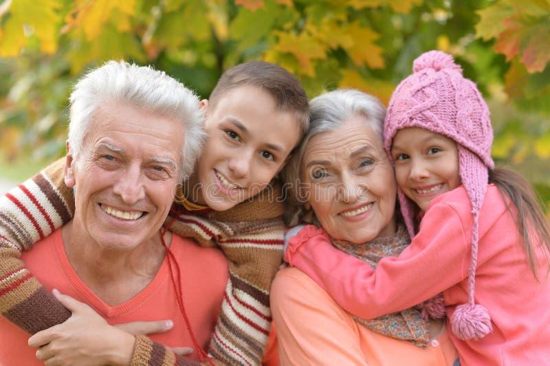 abuelo, abuela y nietos en parque foto de archivo libre de regalías