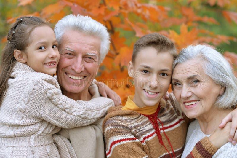 abuelo, abuela y nietos en parque foto de archivo