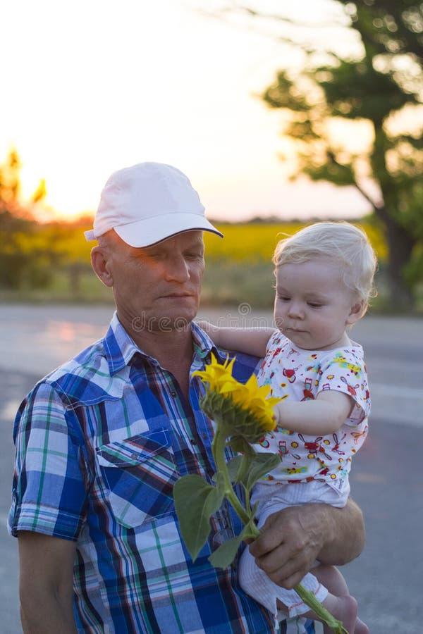 Abuelo con el nieto en sus brazos que sostienen un girasol imagen de archivo