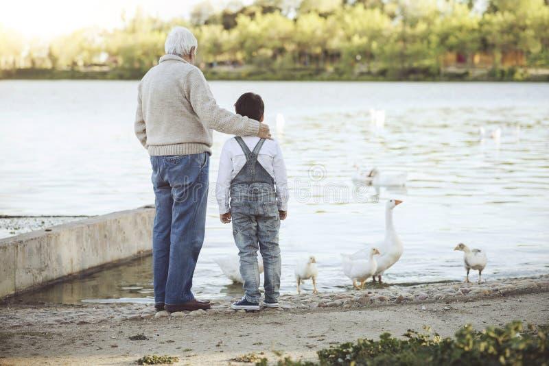 Abuelo con su nieto en el lago foto de archivo
