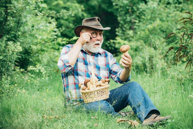 Abuelo feliz - verano y aficiones El recorrer del viejo hombre Pensionista del abuelo El caminar mayor en el retiro del bosque foto de archivo libre de regalías